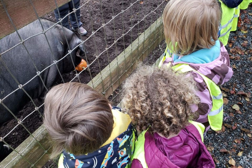 University-Ravenna Cooperative Preschool : Field trip to Kelsey Creek Farm with the 3-5s Class